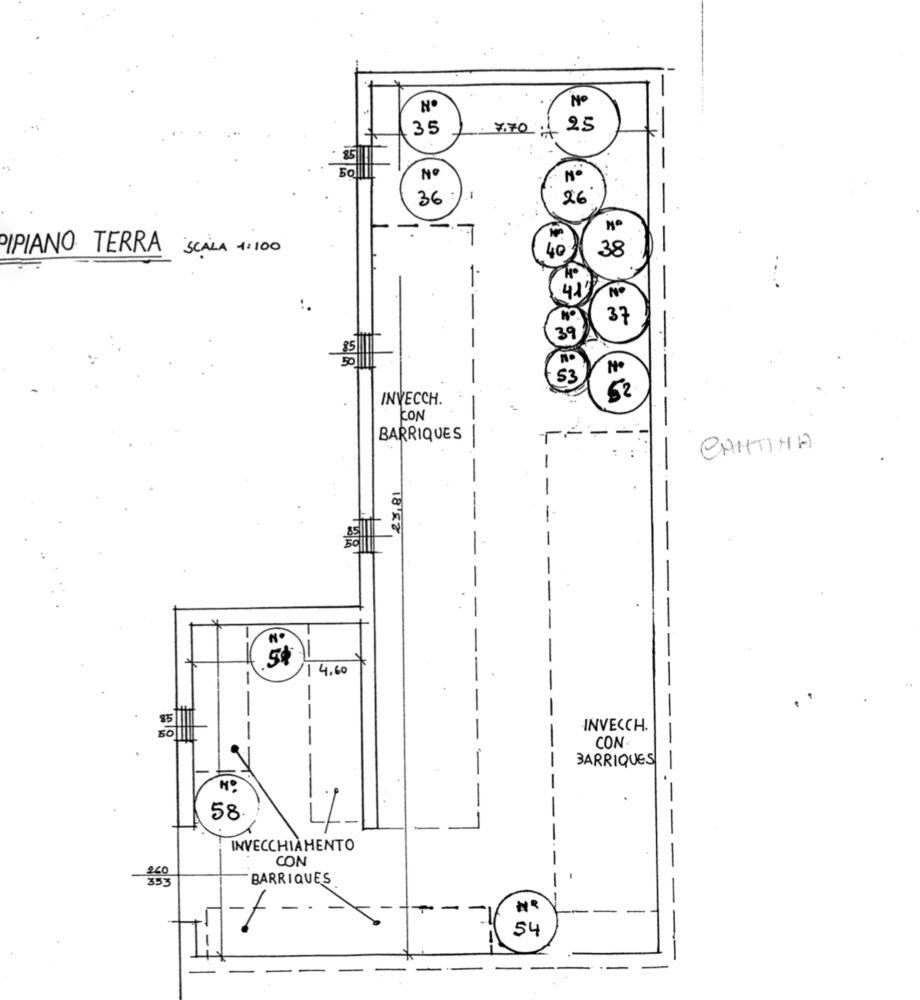 floor plan cellar