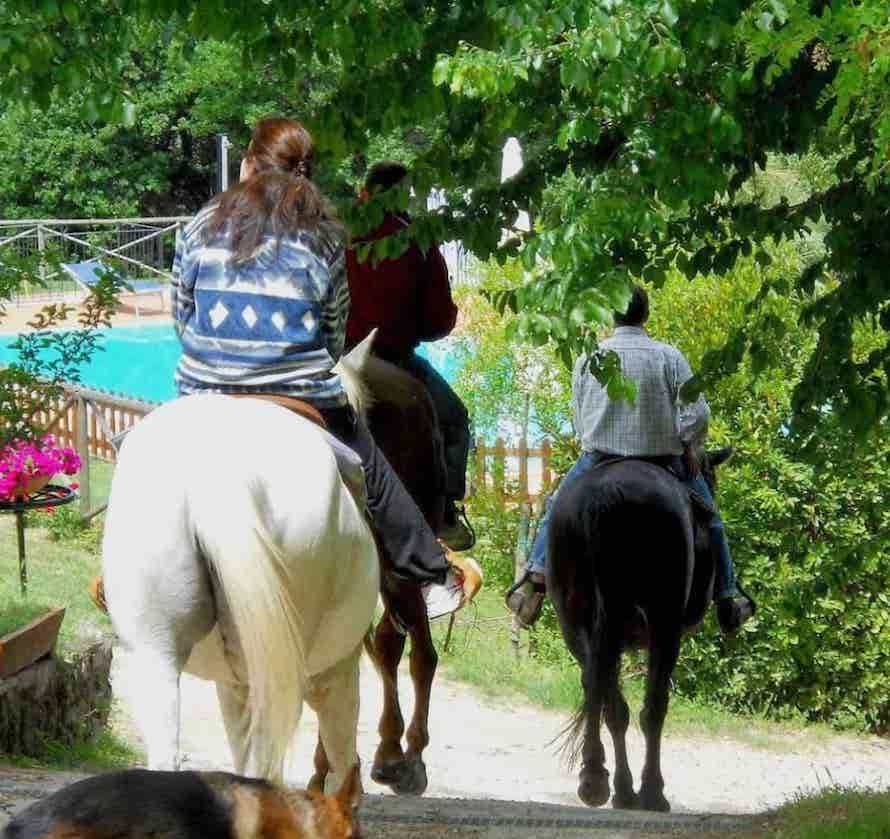agriturismo activities tuscany horses